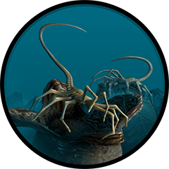 Icon for Bug Hunt