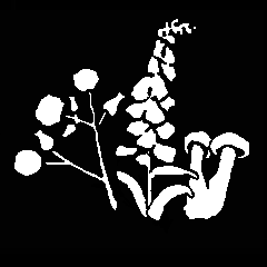 Icon for Generall Historie of Plantes