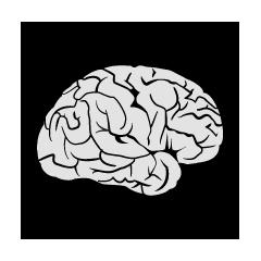 Inquisitive Mind