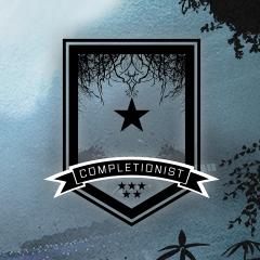 Midnight Completionist