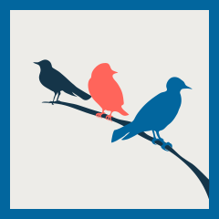 Three Birds, One Stone