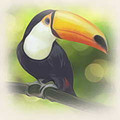 The Maltese Toucan