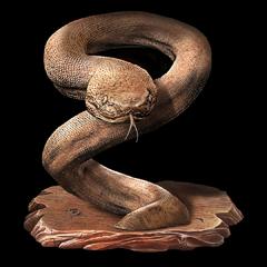 Great Serpent