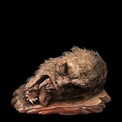 Guardian Ape Immortality Severed