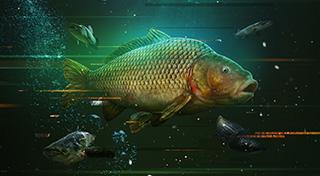 The Catch: Carp & Coarse achievements