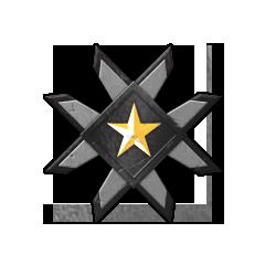 Valor Medal